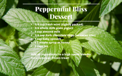 Peppermint Bliss