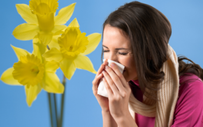 Keep Allergy Symptoms Away the Natural Way