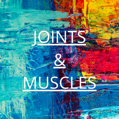 Joints & Muscles